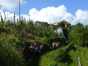 13. 14 maggio Raduno mangia Trekking (3)